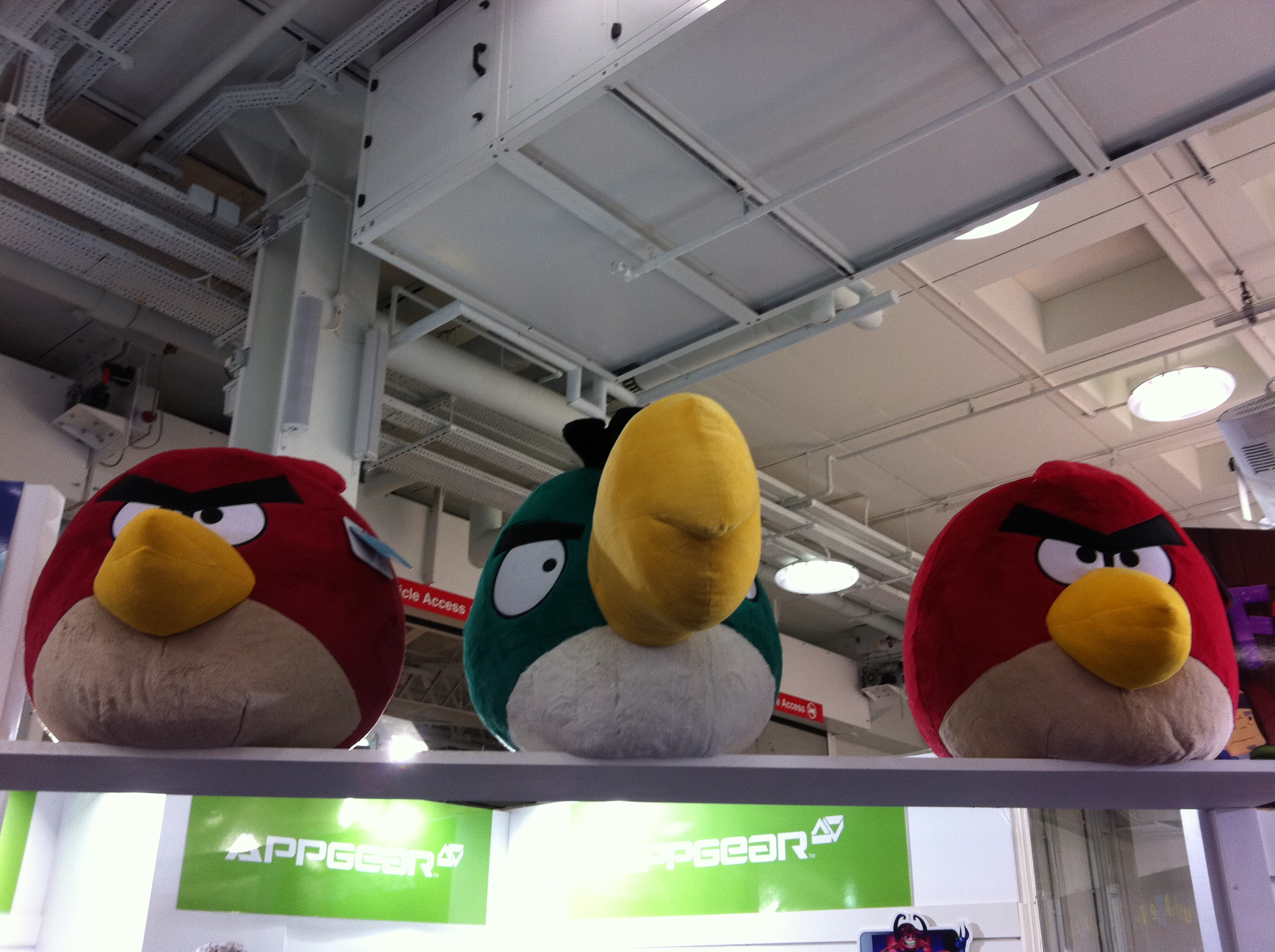 Giant Angry Birds Sitting on a Fence