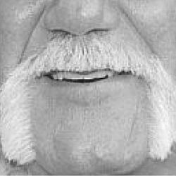 #8 Moustache