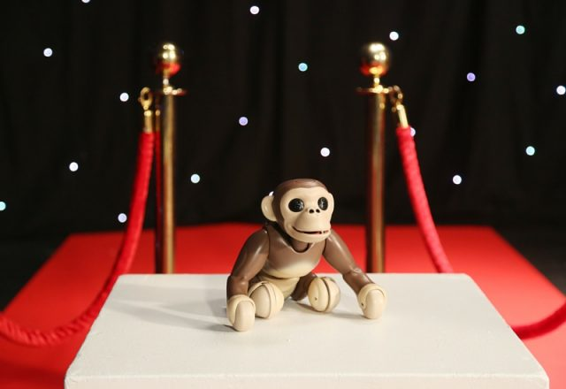 Zoomer Chimp on the Red Carpet